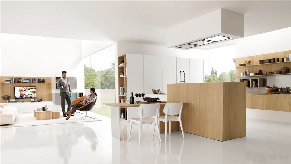 Cucine moderne euromobil living and cooking for Zona living moderna